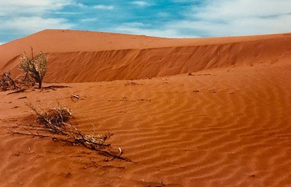 Yapunyah Sand Dunes