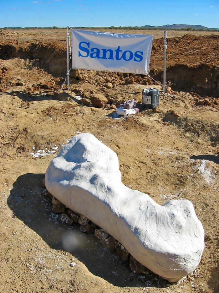 Santos Sponsorship banner