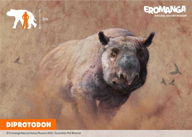 DIPROTODON illustration for ENHM