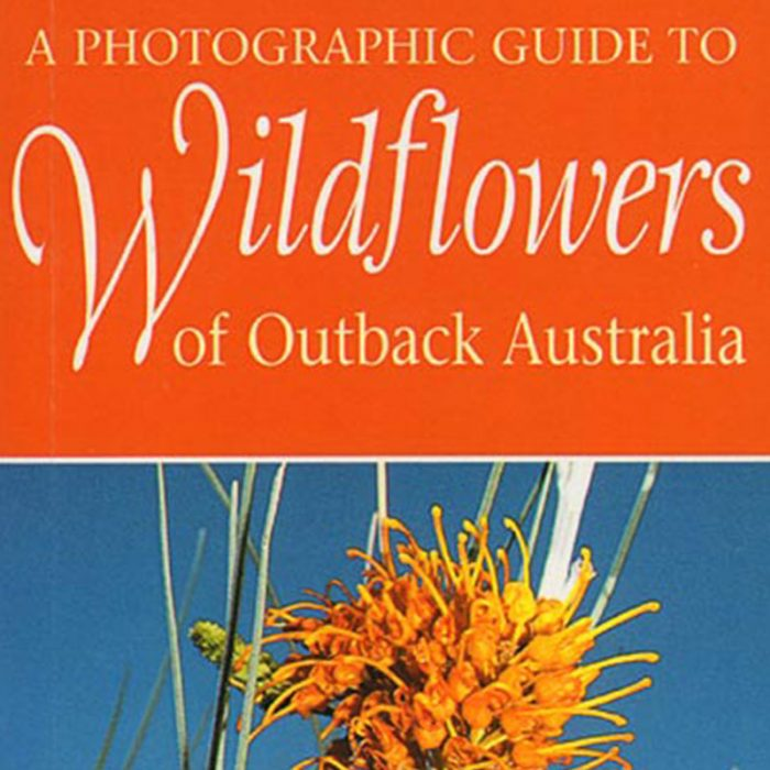 A photographic guide to Wildflowers of Outback Australia