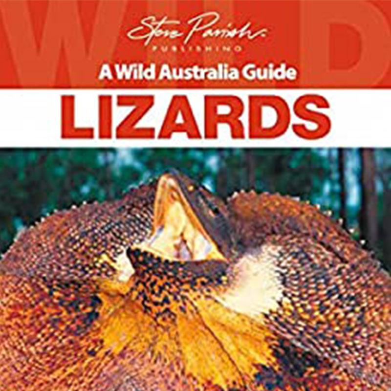 A wild australia guide to lizards book