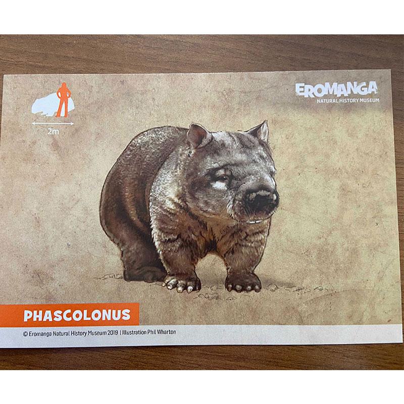 ENHM Megafauna Postcards