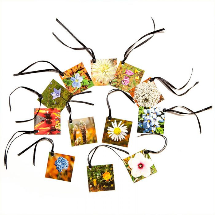 Gift tags - Flora